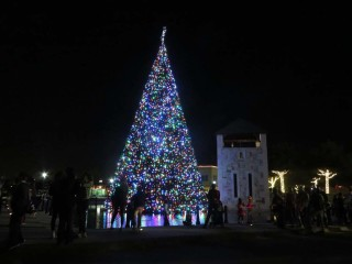 Holiday in the Plaza and Tree Lighting