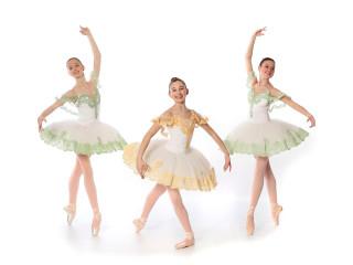 Ballet Ensemble of Texas presents A Celebration of Dance 2019