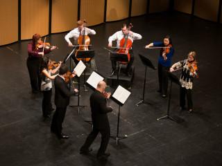 Dallas Symphony Orchestra Musicians