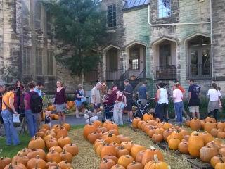St. Mark's United Methodist Church Fall Festival and Pumpkin Patch