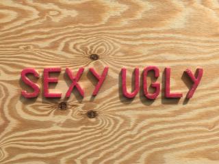 Ro2 Art Gallery presents Barbara Horlander: Sexy Ugly