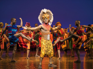 Jared Dixon as Simba in The Lion King