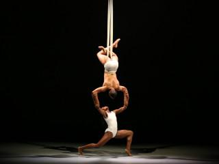 Dallas Black Dance Theatre presents Petit Performance