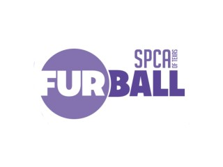Fur Ball logo