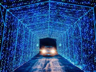 Rudolph's Lightshow