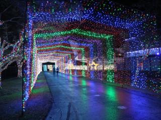 Galaxy Lights Space Center Houston