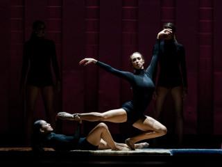 Avant Chamber Ballet presents Still Growing