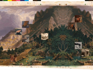 """Amon Carter Museum of American Art presents """"Stephanie Syjuco: Double Vision"""""""