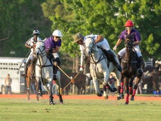 Houston Polo Club polo