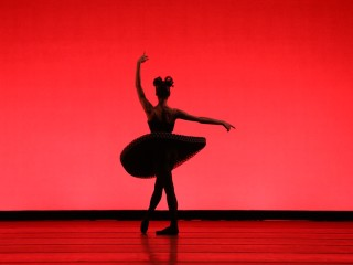 Margaret Alkek Williams Jubilee of Dance
