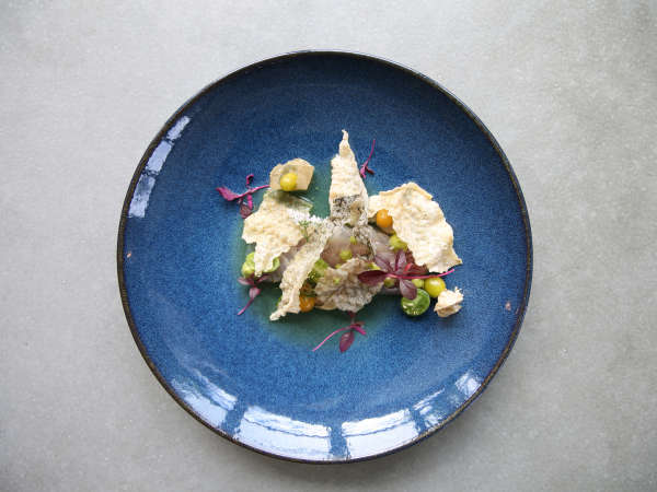 Eberly restaurant Austin ceviche