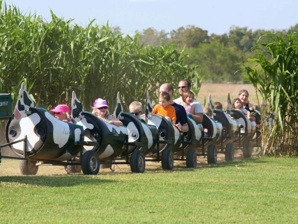 Barton Hill Farms ride