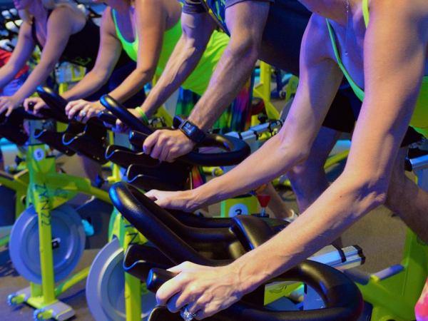 Zyn22 cycle studio