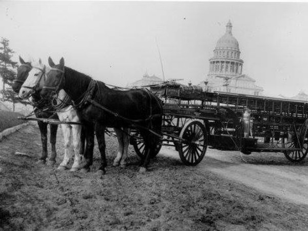 Austin Fire Department historical photo capitol building horses