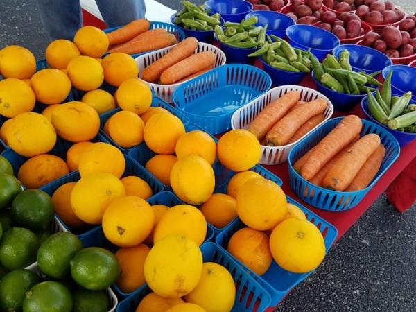 Highland Park San Antonio farmers market produce