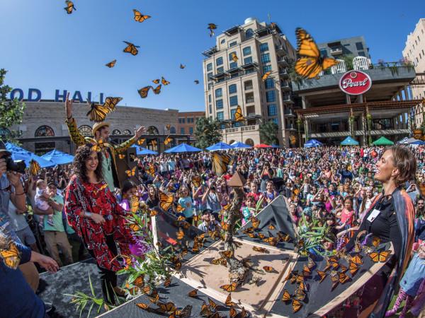 Butterfly Festival San Antonio Monarch Butterfly & Pollinator Festival
