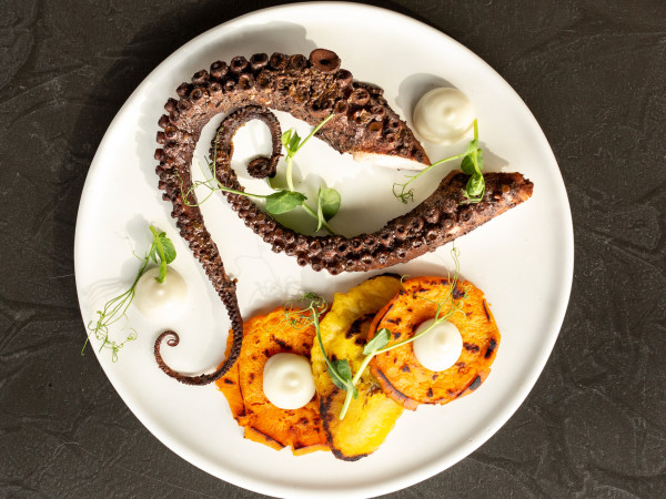 Mutiny Wine Room braised jerk Spanish octopus