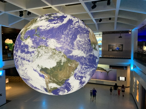HMNS: Gaia-Earth