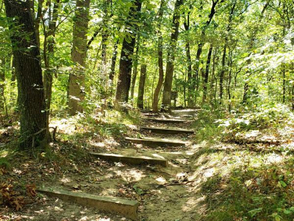 Post Oak Preserve