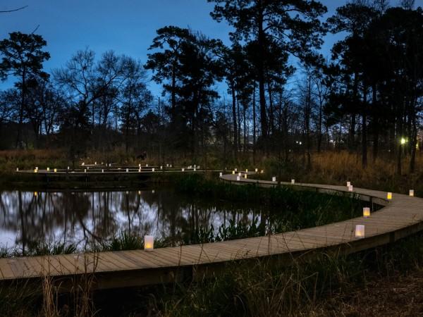 Houston Arboretum boardwalk