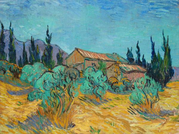Van Gogh_Cabanes de bois parmi les oliviers et cyprès