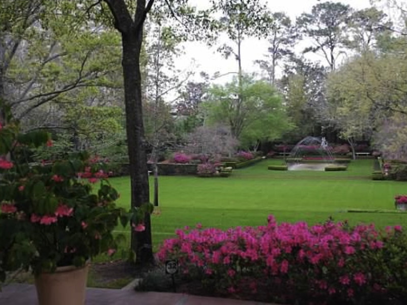 River Oaks Garden Club's Azalea Trail - Event - CultureMap Houston