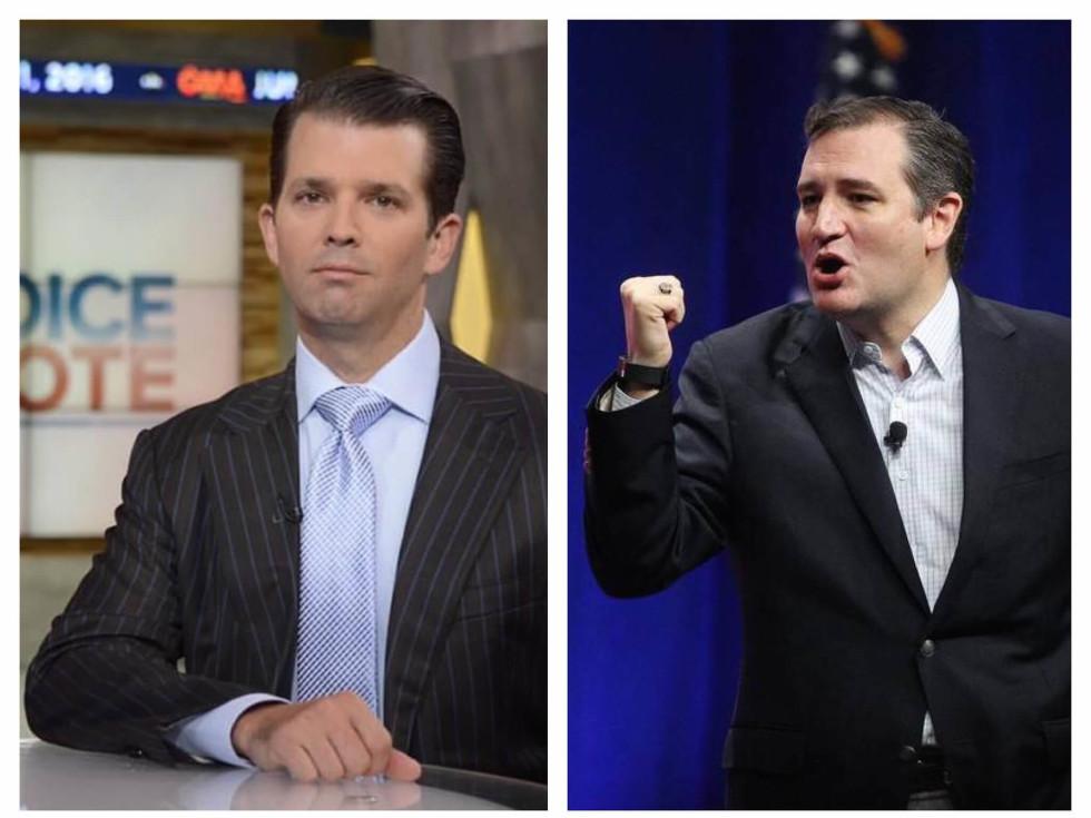 Donald Trump Jr Ted Cruz combined pic