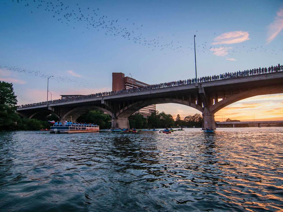 Rowing Dock downtown Austin Congress Avenue Bridge bats kayaking
