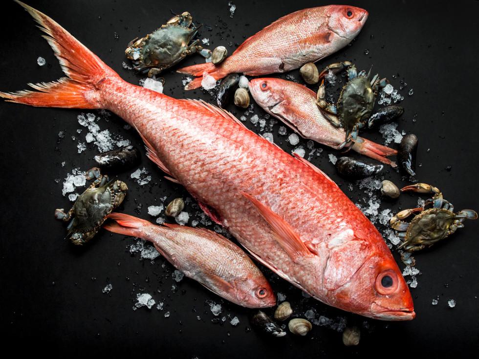One Fifth Chris Shepherd whole fish