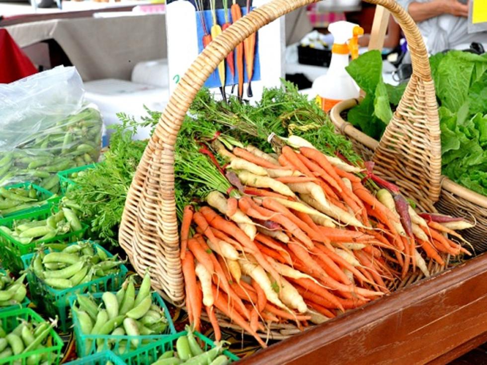 "Urban Harvest class: ""High Production Donation Gardening"""
