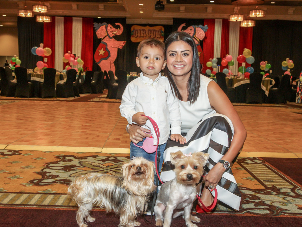 Citizens for Animal Protection 6/16 Sheriff