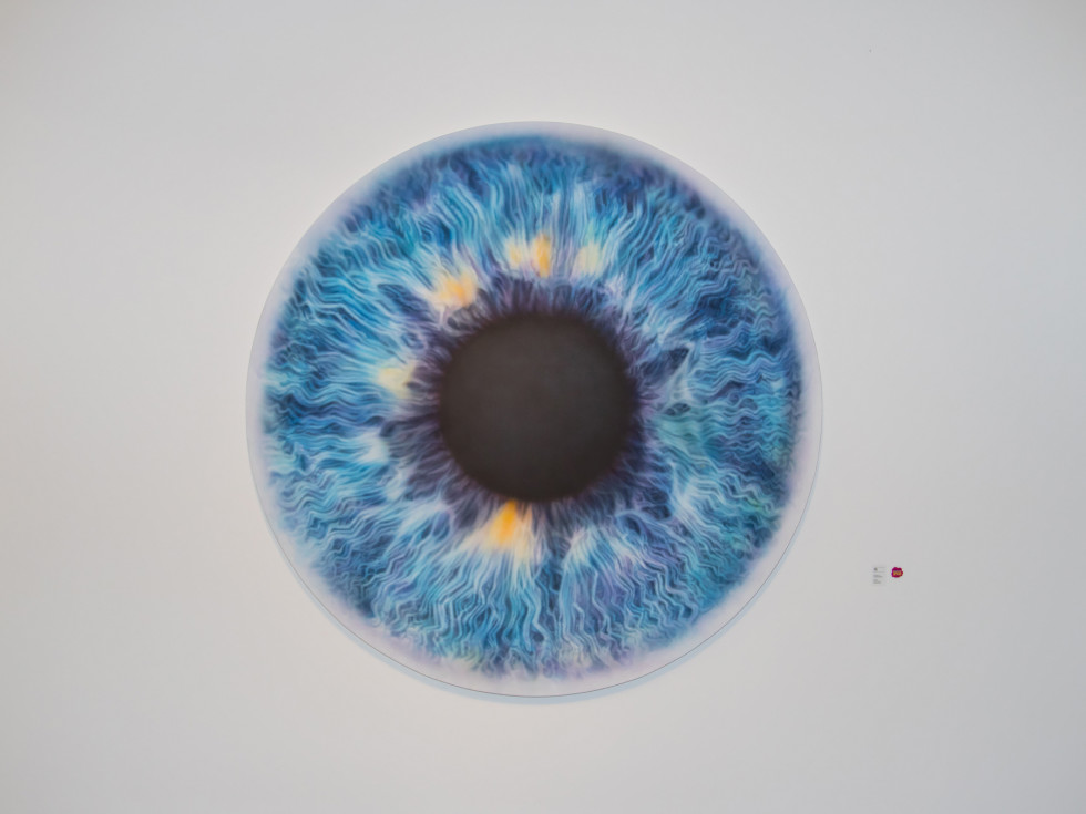 Marc Quinn eye painting