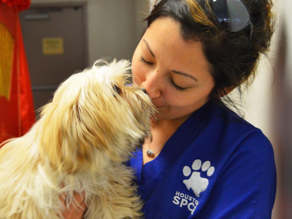 Houston SPCA