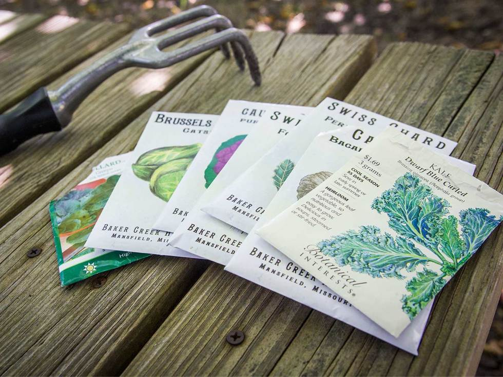 Picture of seed packets for kale, cabbage and other cool season crops