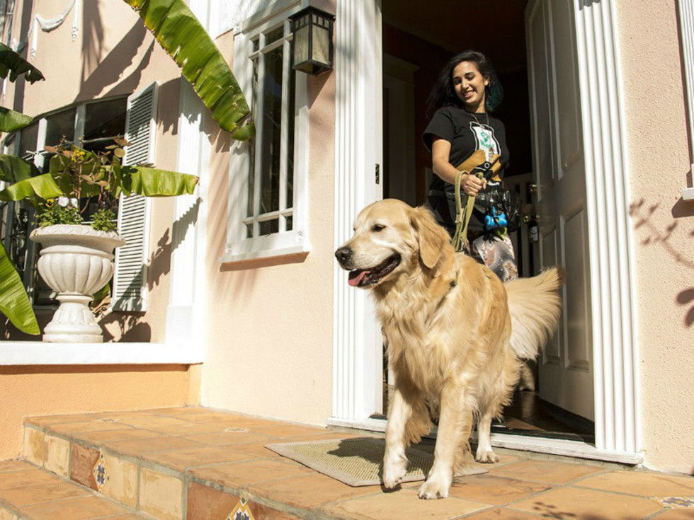 Wag! dog walking service