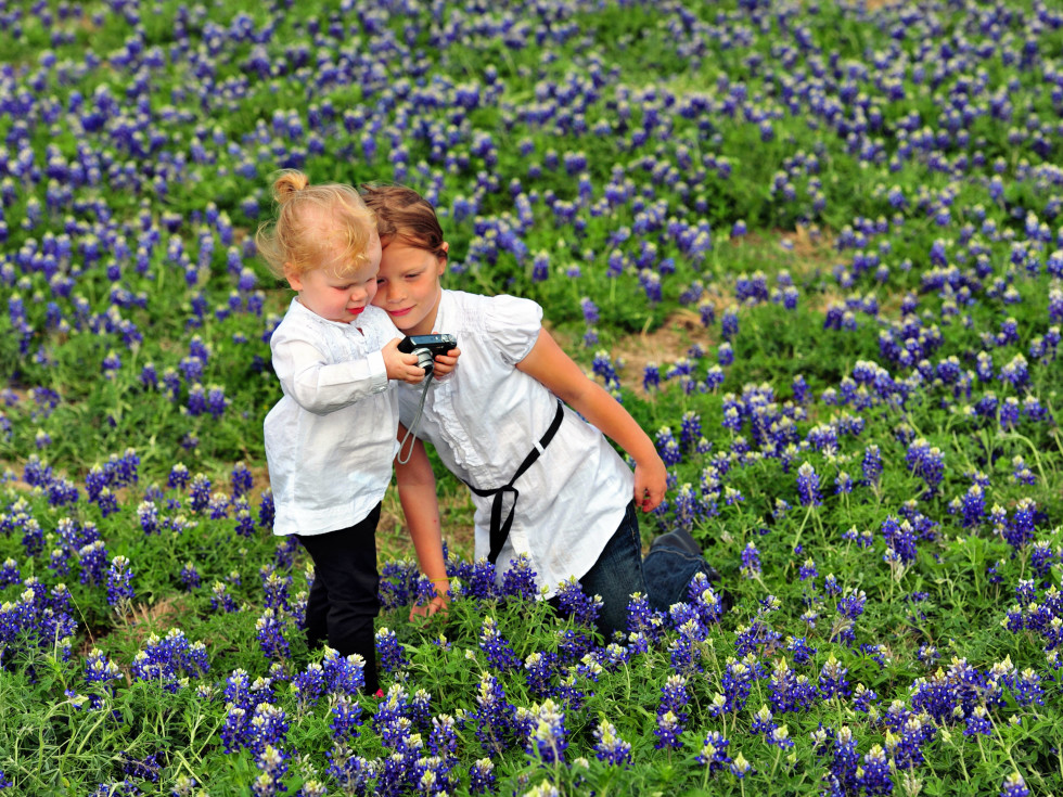 Two little girls in a bluebonnet field