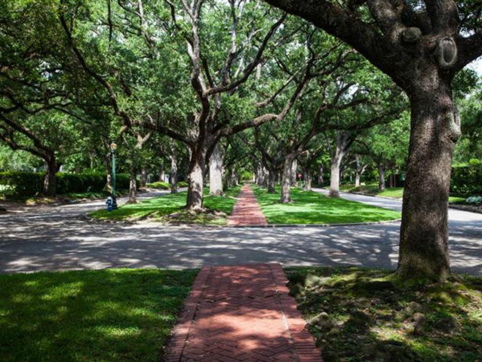 Scenic of Broadacres Houston community North South Street