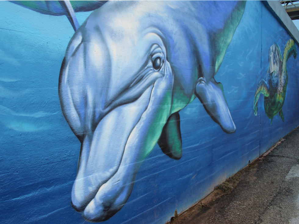Turtle Soup downtown houston art mural dolphin