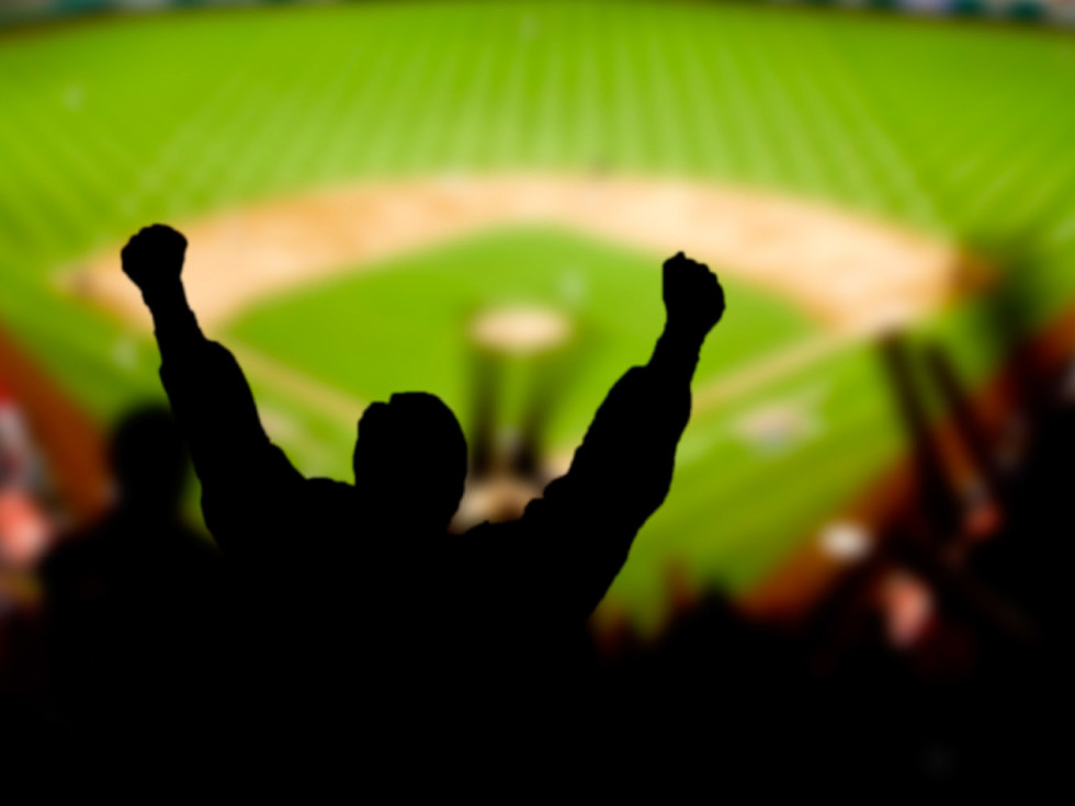 News_Baseball_fans_stadium