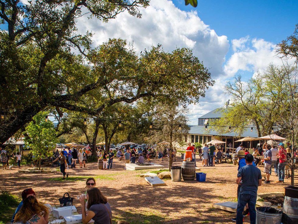 Jester King Brewery grounds