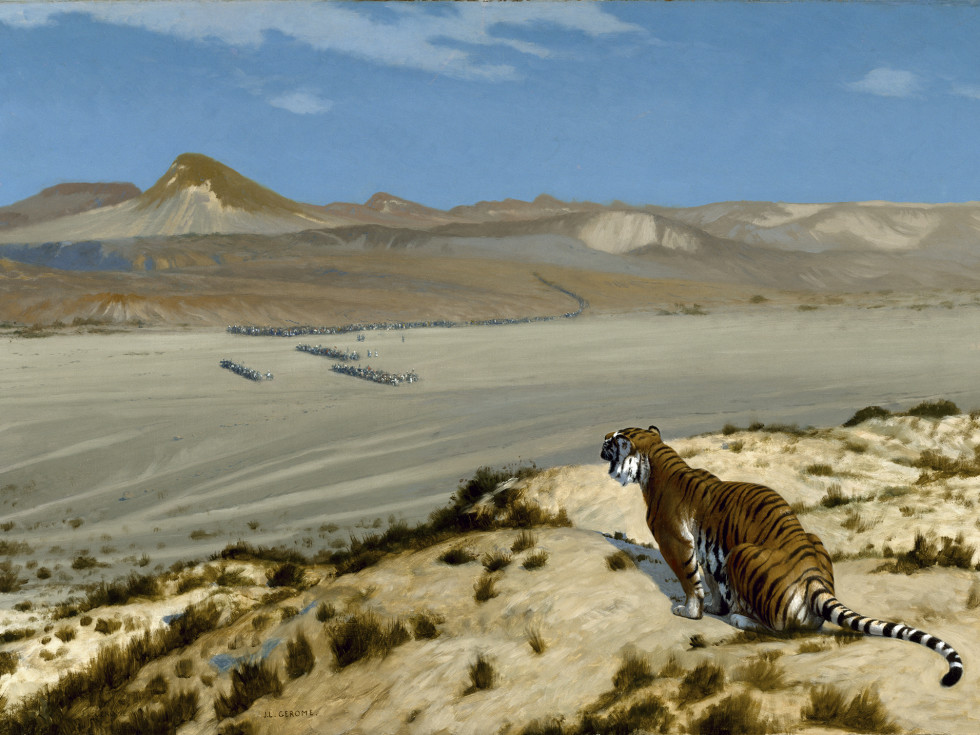 Gerome, Tiger on the Watch, Fortuny Meadows Museum