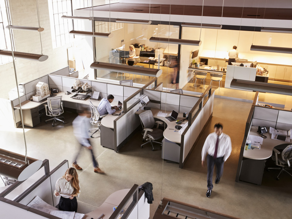 workers in an office with cubicles