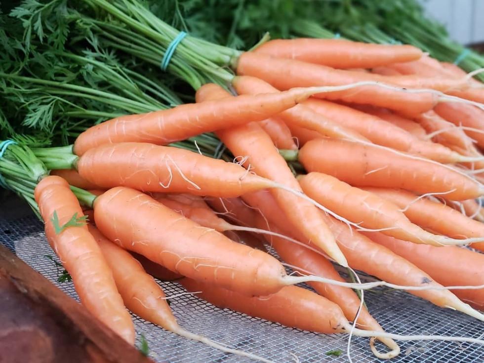 Green Bexar Farm carrots produce