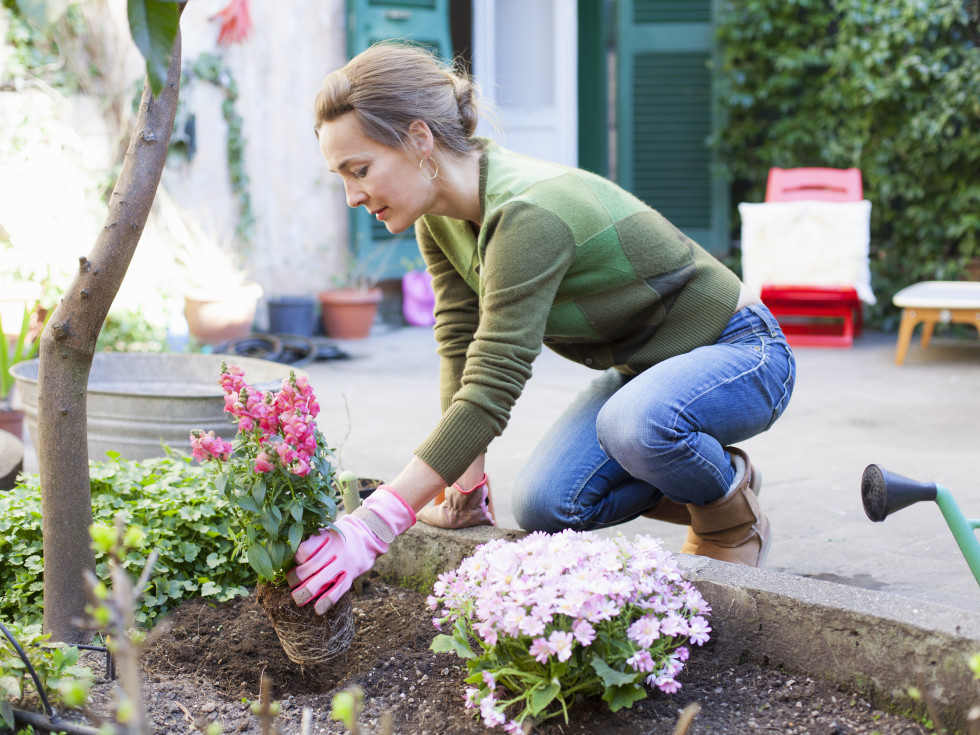 Woman planting flowers outside