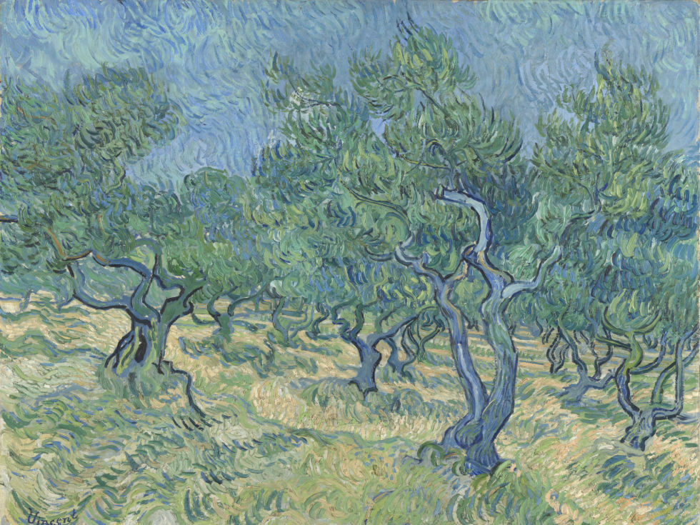 Dallas Museum of Art presents Van Gogh and the Olive Groves
