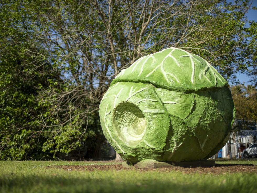 True North Heights sculptures Big Cabbage - Bill Davenport