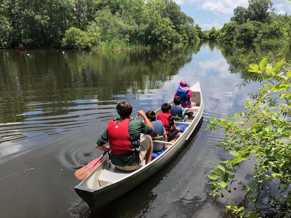 Armand Bayou Pasadena canoe