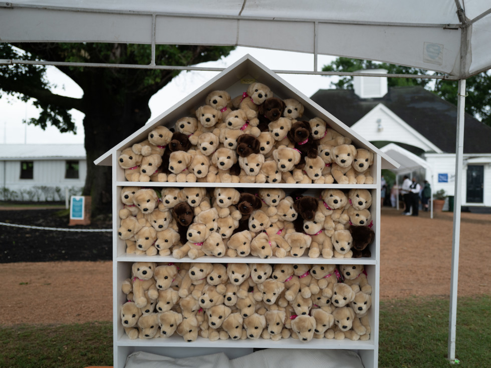 Bo's Place Kentucky Derby 2021 Houston Polo Club puppy wall