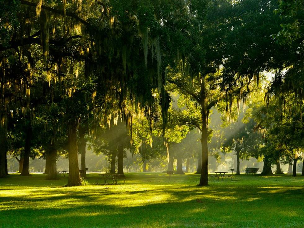 Best Texas State Parks HomeToGo 2021