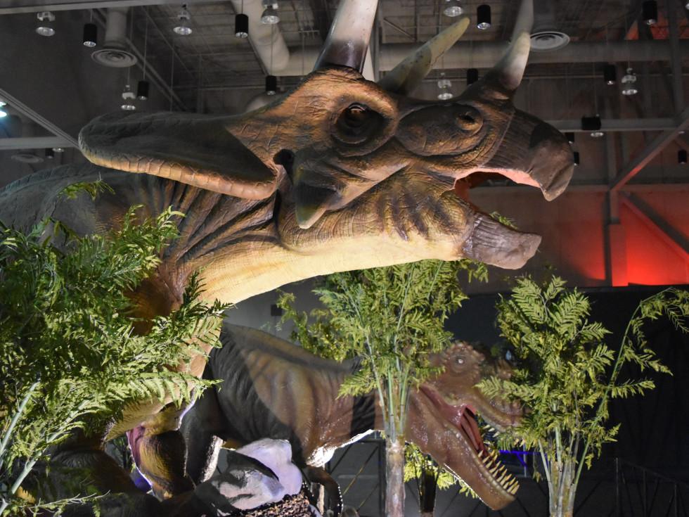 Jurassic Quest Triceratops